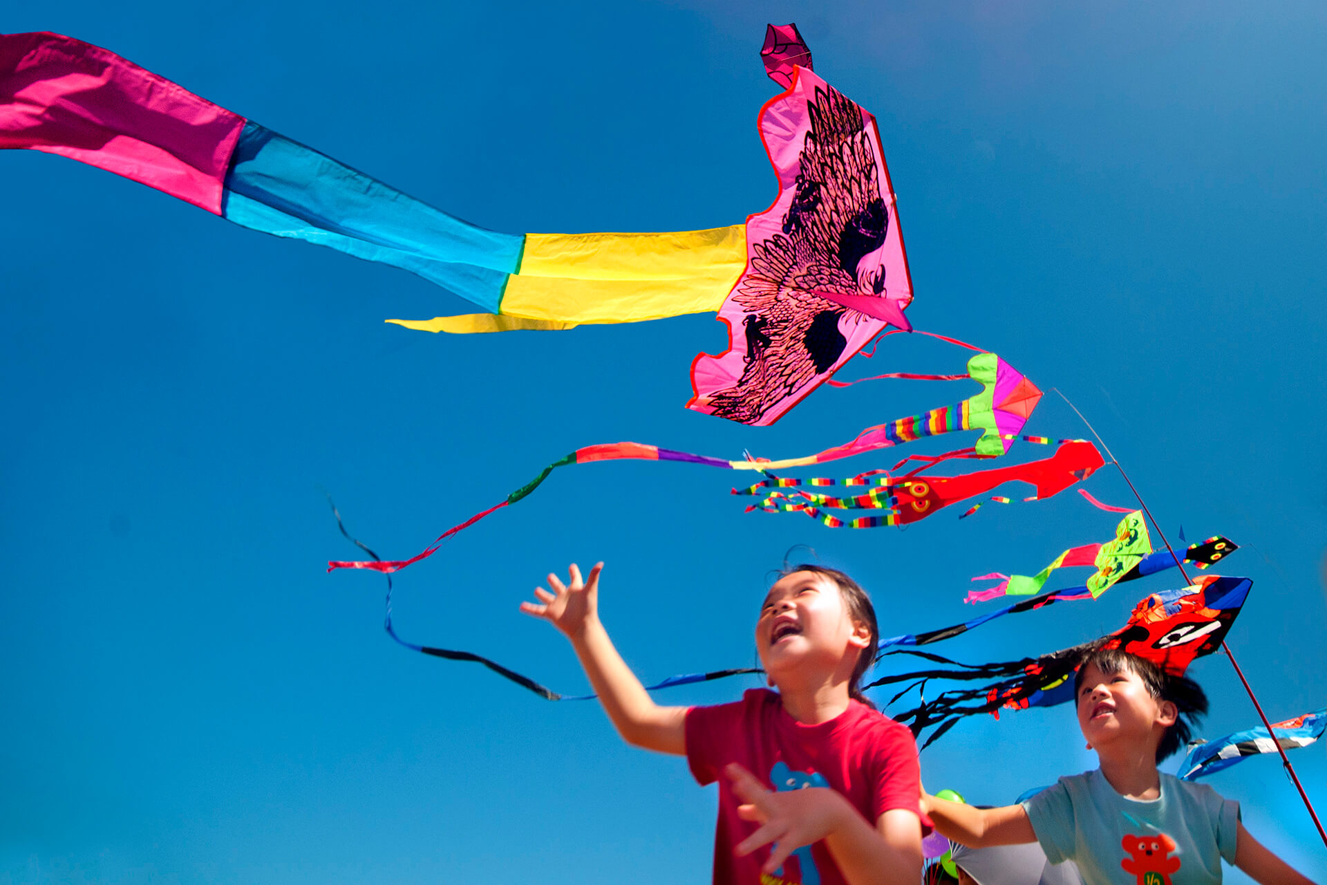 North Coast International Kite Festival