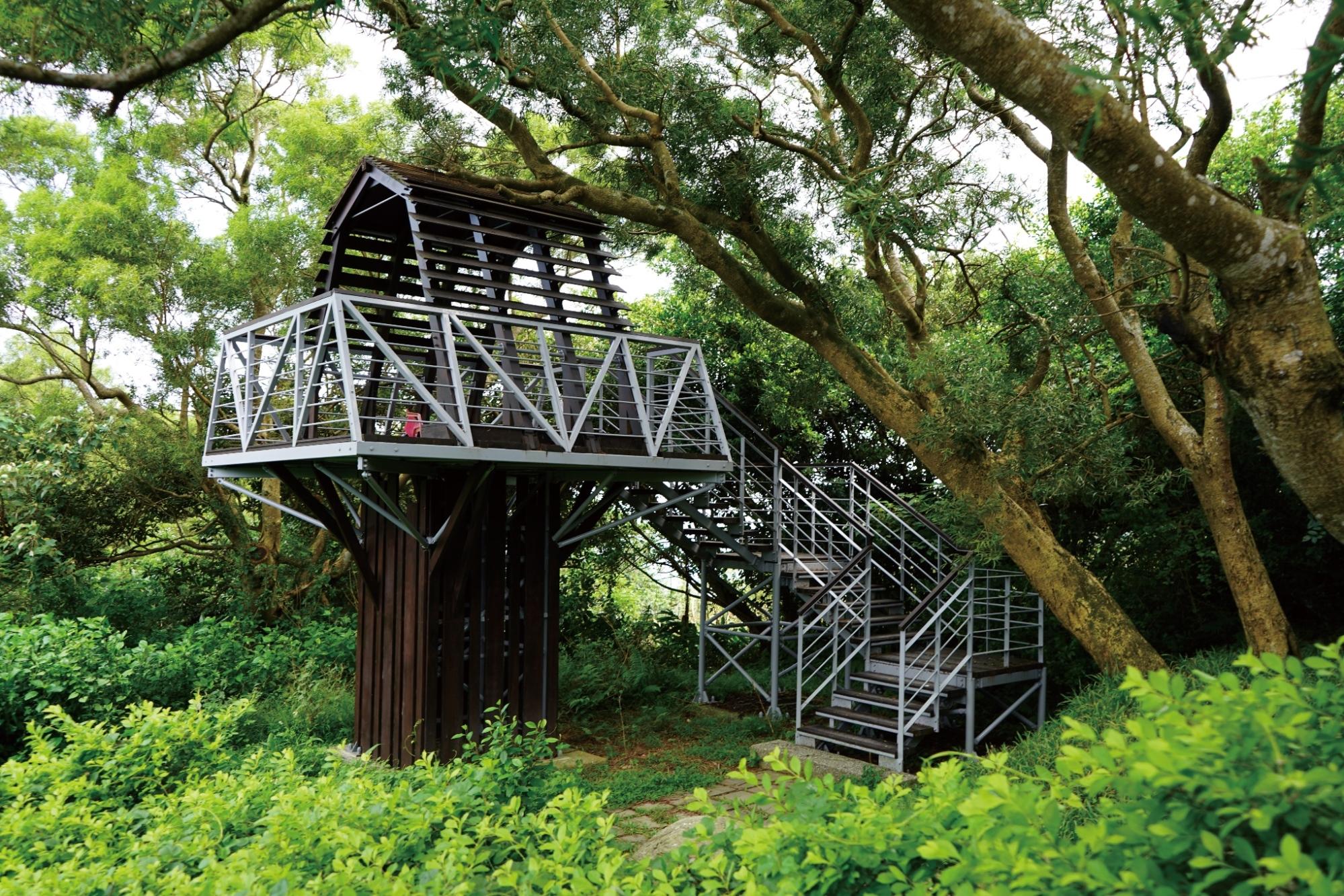 觀音山牛港稜步道樹屋造型觀景台