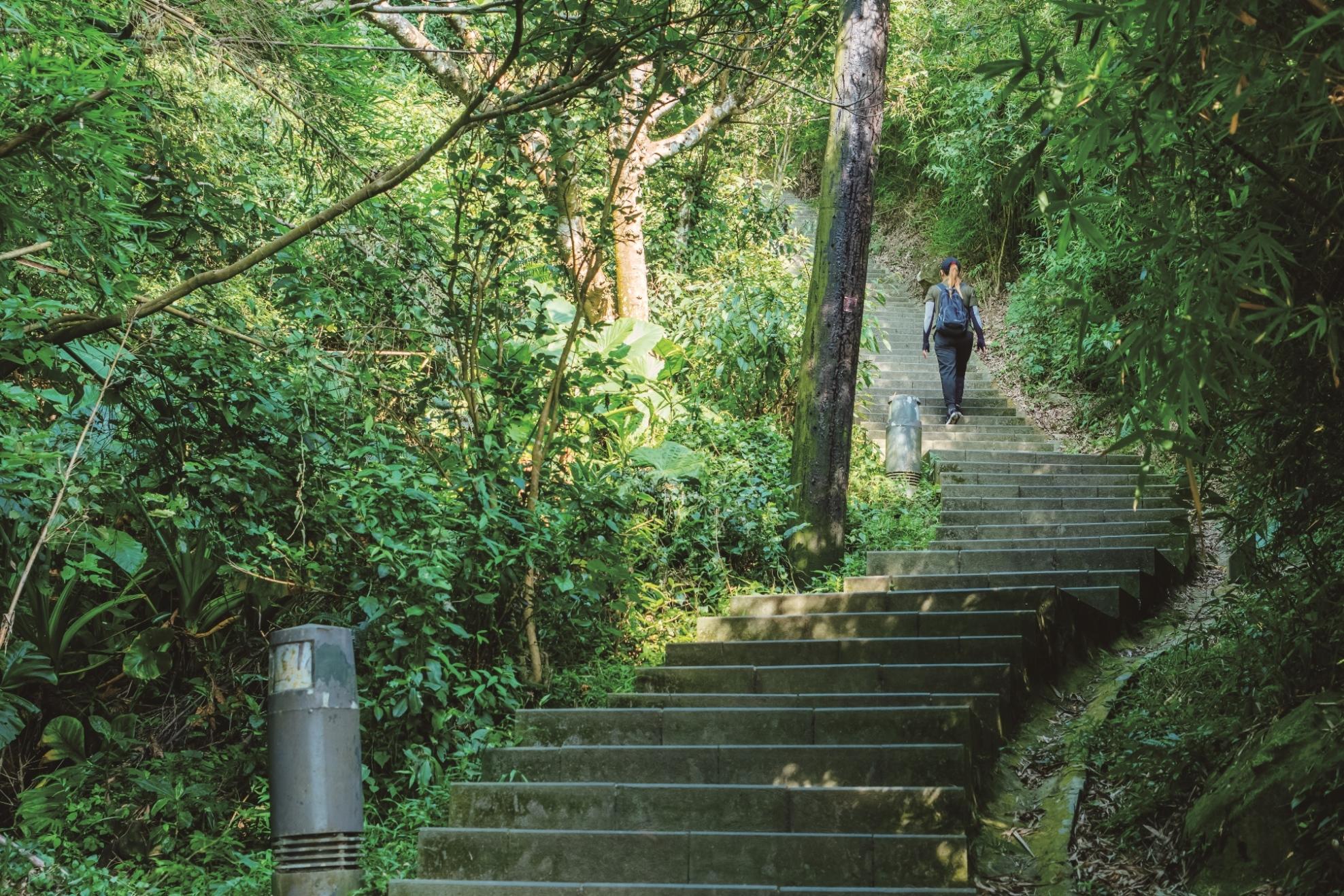 觀音山步道沿途綠蔭遮蔽夏日也不覺炎熱