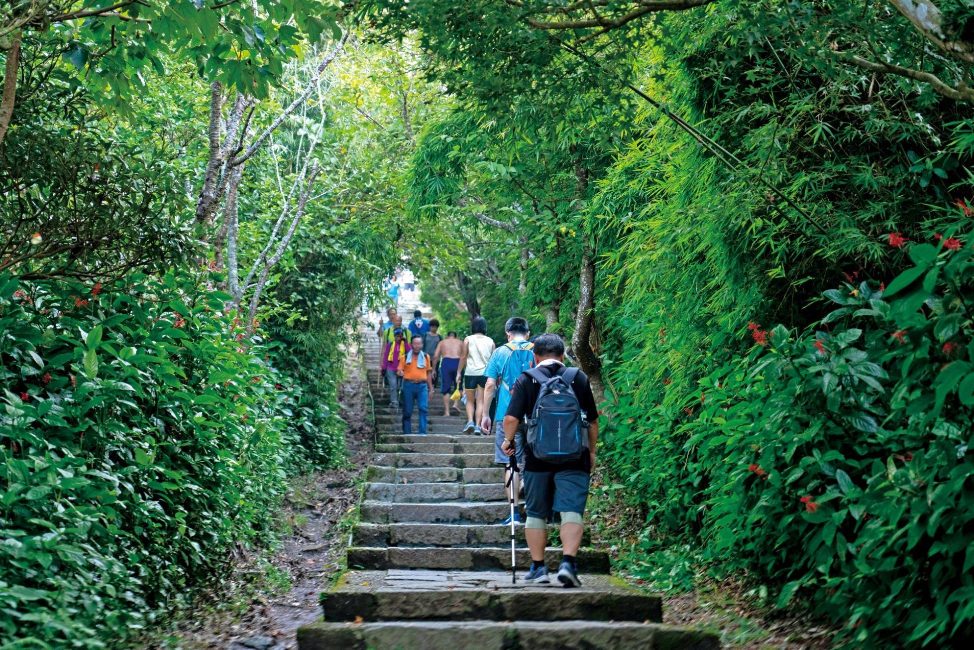 觀音山步道生態豐富是民眾假日休閒好去處